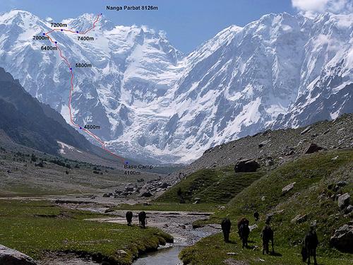 Nákres Kinshoferovy cesty s 4300metrovým převýšením západní Diamirské stěny. Napravo od vrcholu pokračuje hřeben Mazeno.