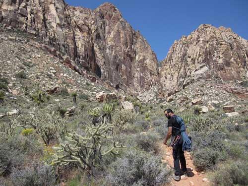 Red Rocks cesta kaňonem v poušti