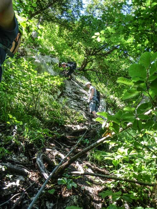 Kletersteig Echernwand - Čeněk se zpočátku chvílemi ztrácí v husté zeleni