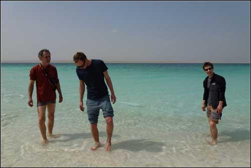 živí hoši v Mrtvém moři