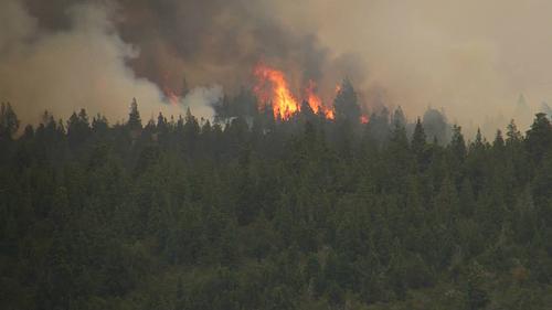 požár již přes 2 týdny v plné síle. Prosíme nehasit.