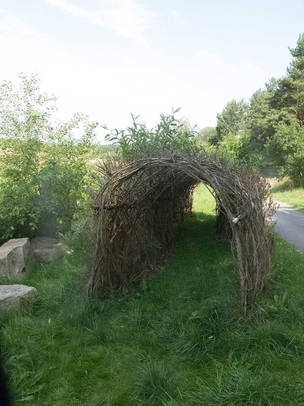 Tunel z vrb