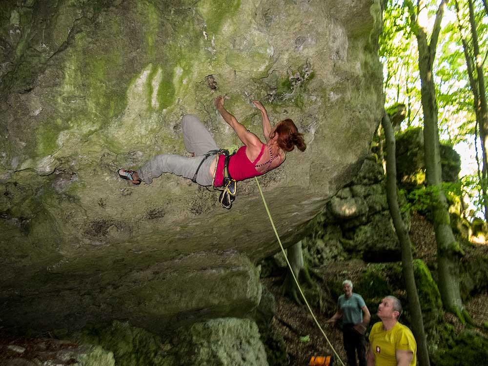 Steinberg, L'alpinist, 7-