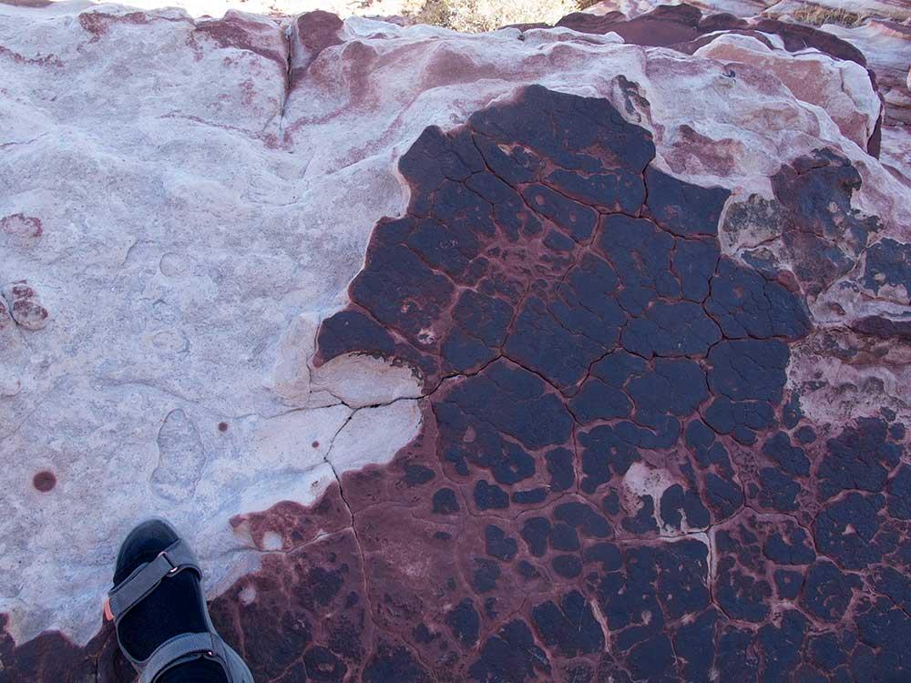 Detail pískovce v Red Springs