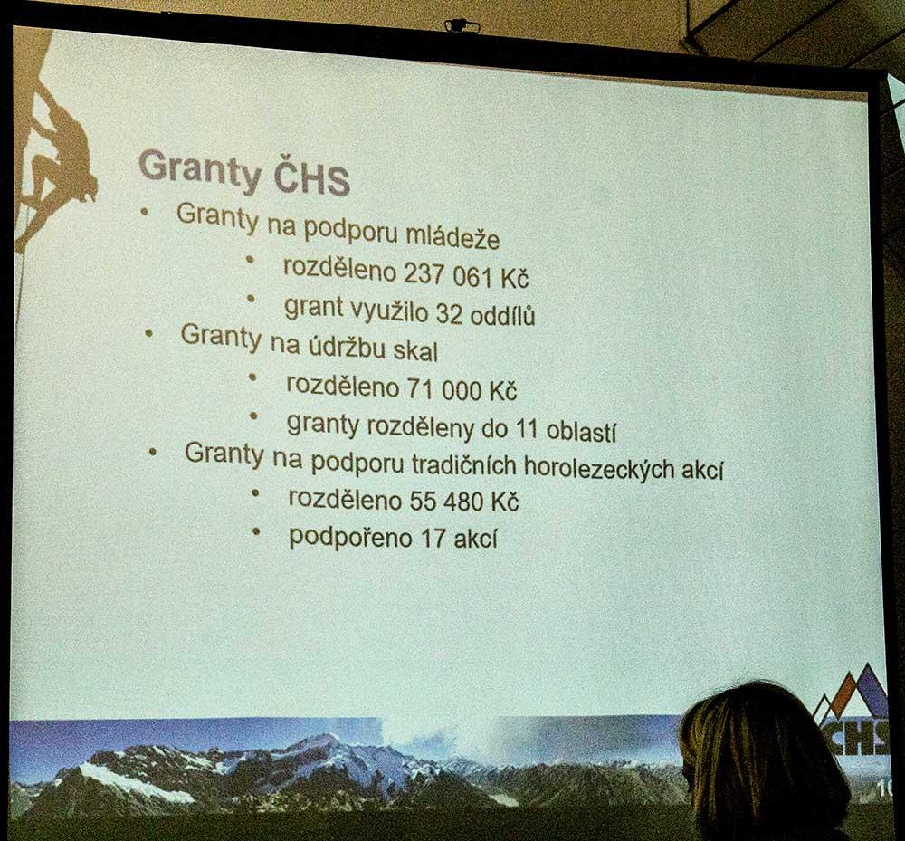 Výroční zpráva - granty