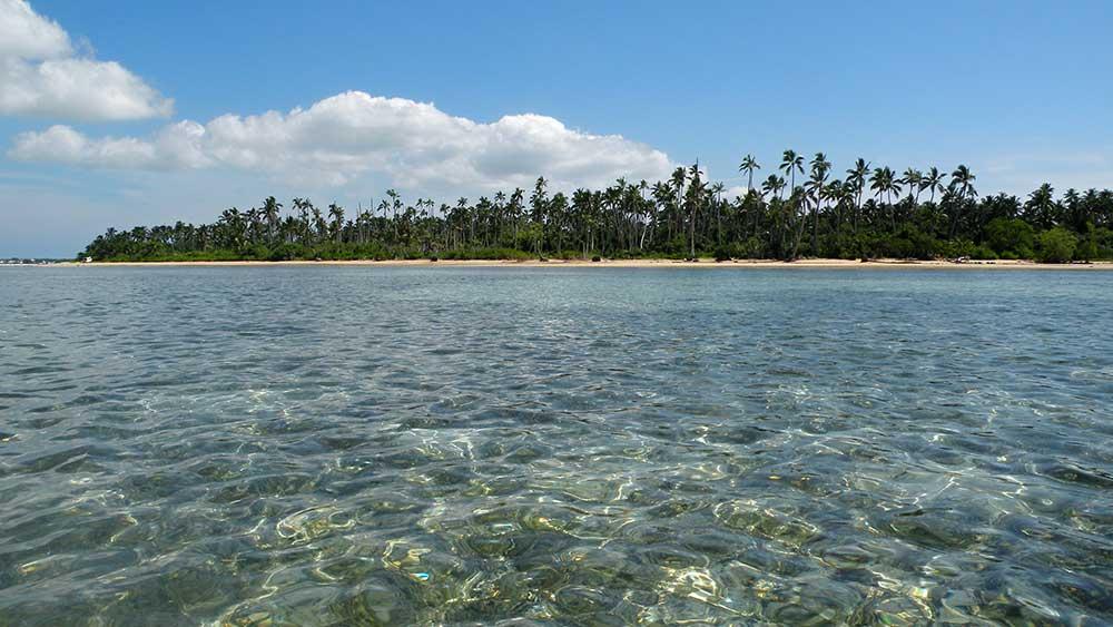 Tonga 7